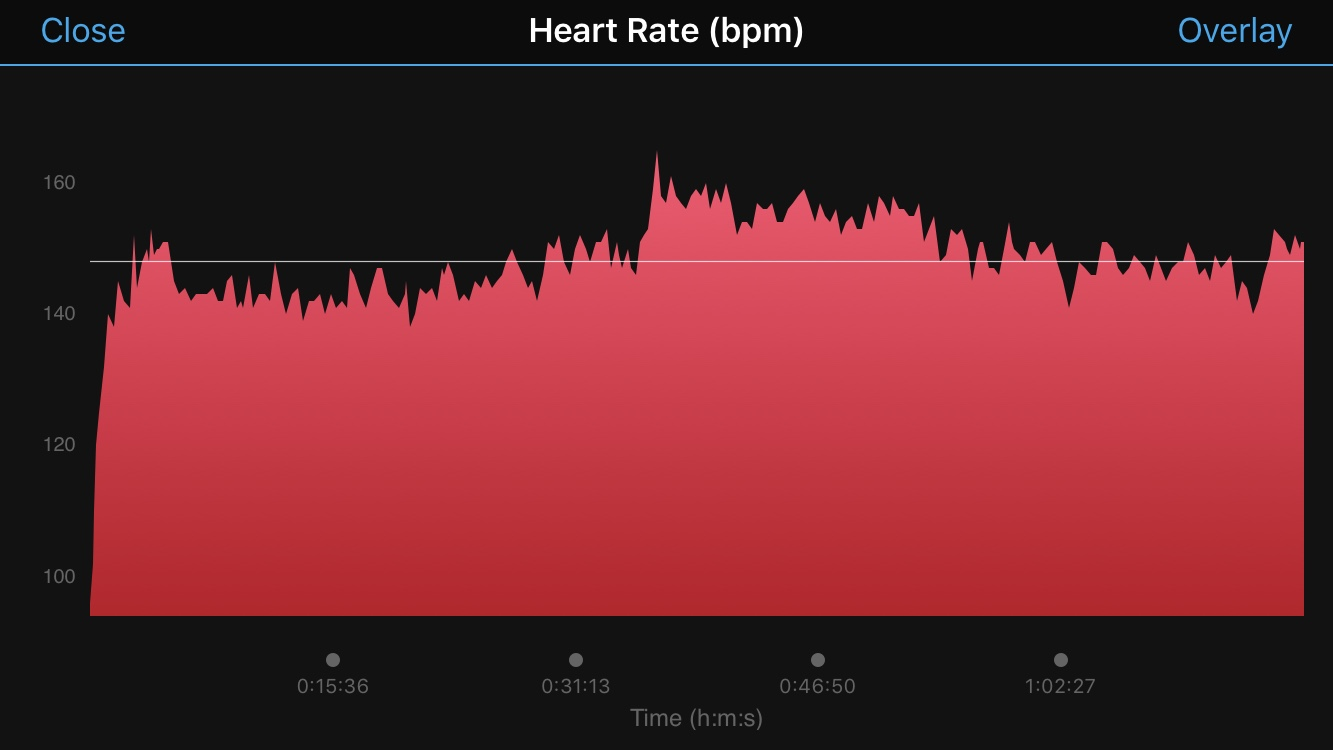 Garmin Heart Rate Training graph