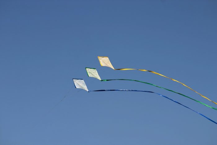 5 Best Kites for Beginners to Get Started | Recreation Insider