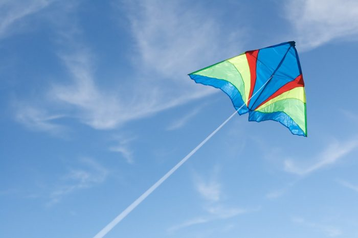 The 8 Types of Kites and How to Fly Them | Recreation Insider